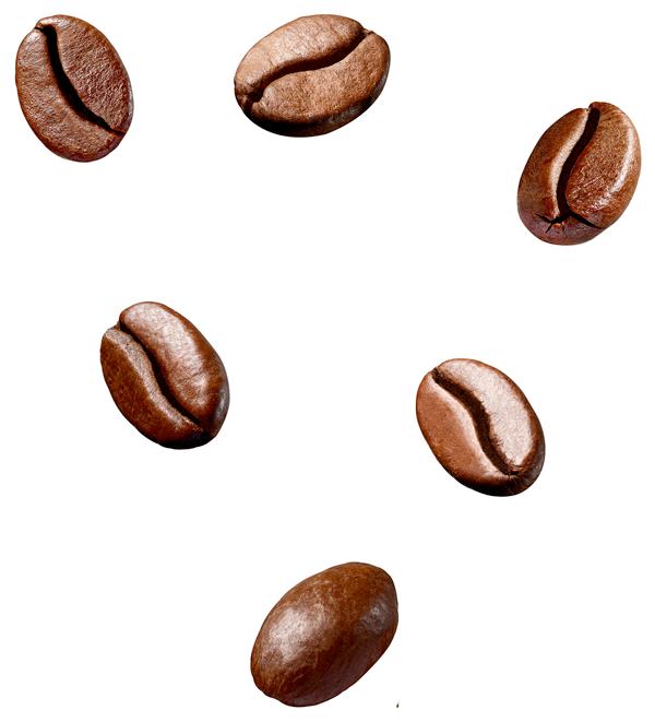 vendita ingrosso caffè in grani roma
